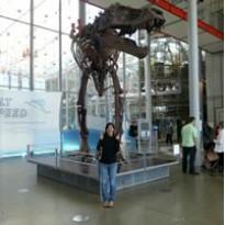 bookasaurusrawr