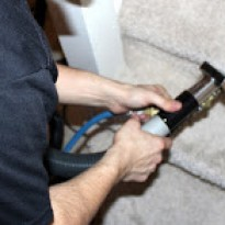 professionalcarpetcleaning