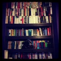 bookbean