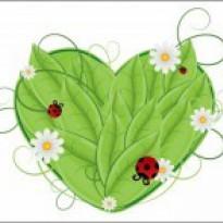ladybugdoodles