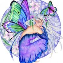 fairydragonstar