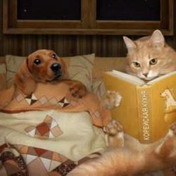 booksandteansugar