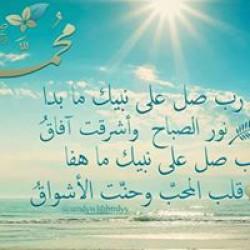 mmsaleh