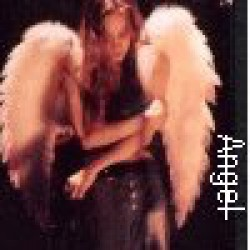 angel320