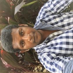 Vinodthevar