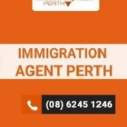 ImmigrationAgent