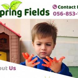 SpringSchool