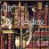 The Reading Cat