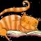 Cat's Books: Romance