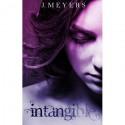 Intangible - J. Meyers