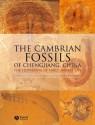 The Cambrian Fossils of Chengjiang, China: The Flowering of Early Animal Life - Xian-Guang Hou, Richard Aldridge, Jan Bergstrom, David Siveter