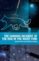 The Curious Incident of the Dog in the Night-Time: The Play - Mark Haddon, Simon Stephens, Paul Bunyan, Ruth Moore