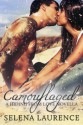 Camouflaged (Hiding From Love, #0.5) - Selena Laurence