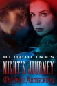 Night's Journey - Mechele Armstrong