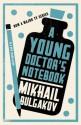 A Young Doctor's Notebook - Mikhail Bulgakov, Hugh Aplin
