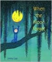 When the Moon Forgot - Jimmy Liao