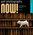 Pet Photography NOW!: A Fresh Approach to Photographing Animal Companions - Paul Walker