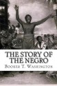 The Story of the Negro: The Rise of the Race from Slavery, Vol. 2 - Booker T Washington