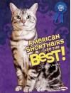 American Shorthairs Are the Best! - Elaine Landau