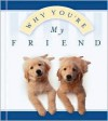 Why You're My Friend - Kelly Williams