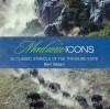 Montana Icons: Fifty Classic Symbols of the Treasure State - Bert Gildart
