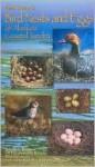 Field Guide to Bird Nests and Eggs of Alaska's Coastal Tundra - Timothy Bowman