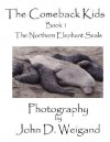 The Comeback Kids Book 1, the Northern Elephant Seals - Penelope Dyan, John D. Weigand