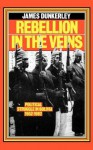 Rebellion in the Veins: Political Struggle in Bolivia, 1952-82 - James Dunkerley