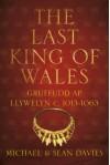 The Last King of Wales: Gruffudd ap Llywelyn, c. 1013-1063 - Michael Davies, Sean Davies