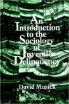 Introduction to the Sociology of Juvenile Delinquency, An - David Musick
