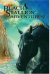 The Black Stallion Adventure Set: Four-Volume Box Set - Walter Farley