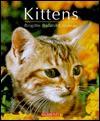 Kittens - Brigitte Bulard-Cordeau