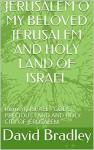 JERUSALEM O MY BELOVED JERUSALEM AND HOLY LAND OF ISRAEL - David Bradley