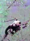 Pandas - Jill Carvan, Jill Caravan