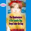 The Misadventures of the Laundry Hag: Swept Under the Rug - Jennifer L. Hart, Jennifer L. Hart, Suzanne Cerreta
