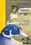 Bsava Manual Of Raptors, Pigeons And Waterfowl - Neil A. Forbes