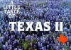 A Little Taste of Texas II - Barbara C. Jones