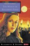 The Witch of Blackbird Pond - Elizabeth George Speare, Tim Stevens
