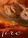 Alaskan Fire - Christina Carlisle