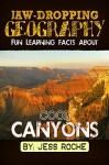 Jaw-Dropping Geography: Fun Learning Facts About Cool Canyons: Illustrated Fun Learning For Kids - Jess Roche