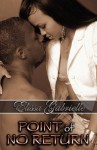 Point of No Return (Peace in the Storm Publishing Presents) - Elissa Gabrielle