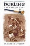 Hurling: The Warrior Game - Diarmuid O'Flynn