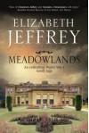 Meadowlands: A World War I family saga - Elizabeth Jeffrey