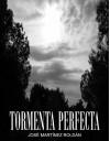 Tormenta Perfecta (Spanish Edition) - Ángel, Fran