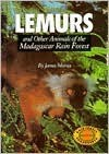 Lemurs: And Other Animals of the Madagascar Rain Forest - James J. Martin