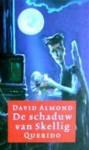De schaduw van Skellig - David Almond, Annelies Jorna