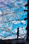 An Uninterrupted View of the Sky - Melanie Crowder