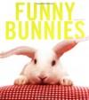 Funny Bunnies - Laurie Frankel