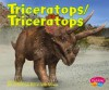 Triceratops/Triceratops - Helen Frost