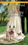 Bride in Training - Gail Gaymer Martin